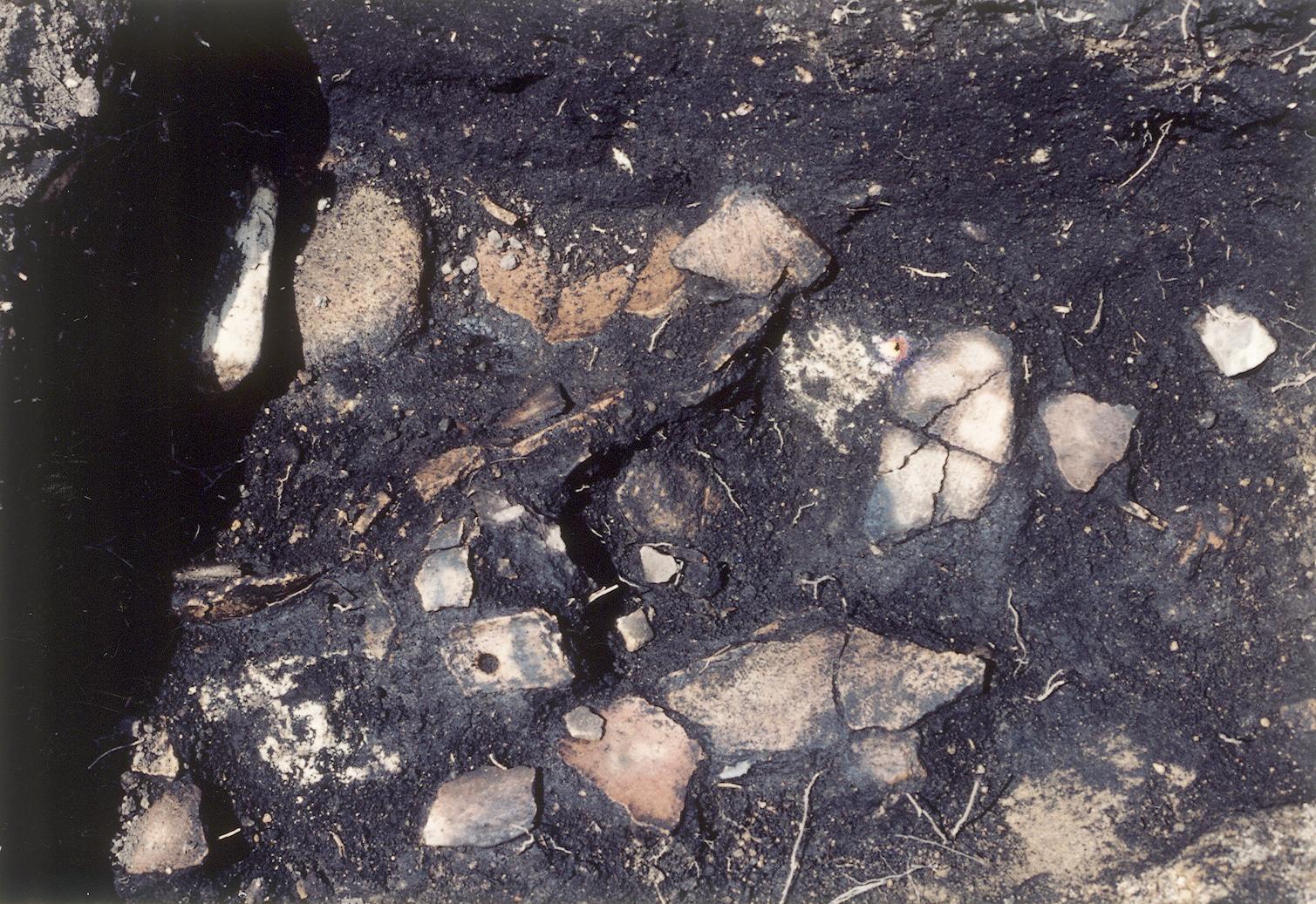 宮内遺跡遺物出土状況