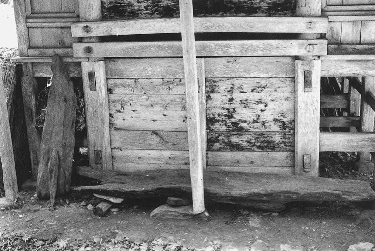 出土した丸木舟