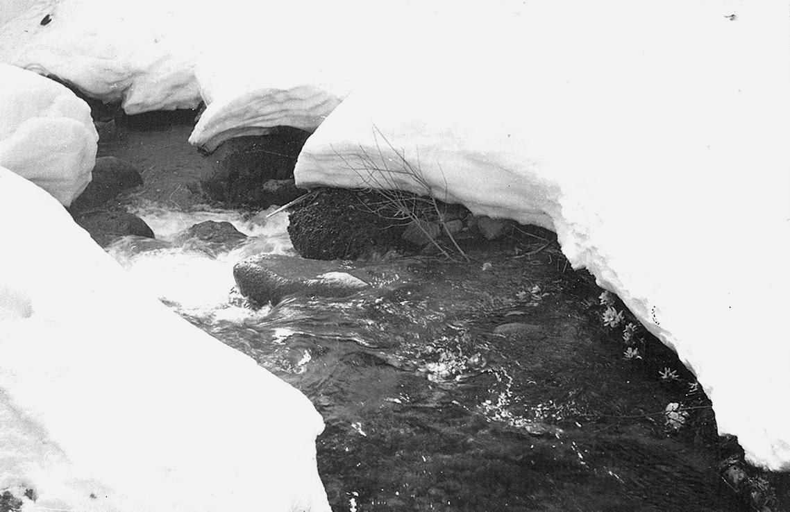 雪とせせらぎ(雪解け)