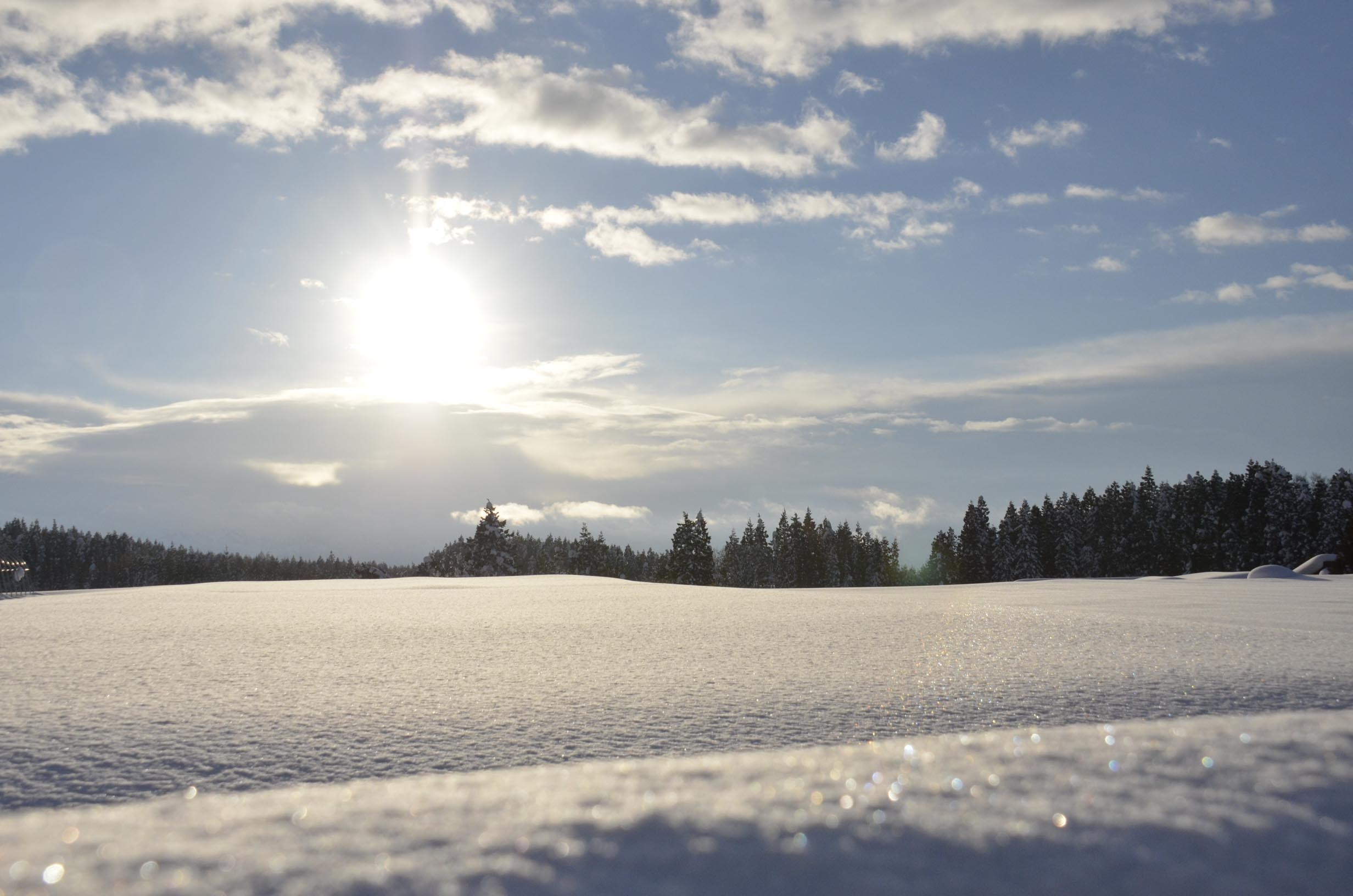 晴天の雪景色