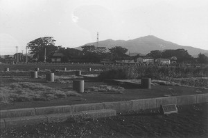 城輪神社(酒田市)