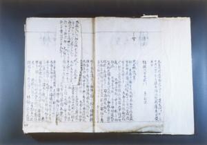 「戸沢藩系図書」(大森御前の項)