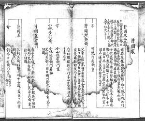 片岡理兵衛家系図