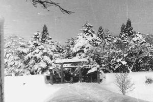 雪の最上公園 鳥居