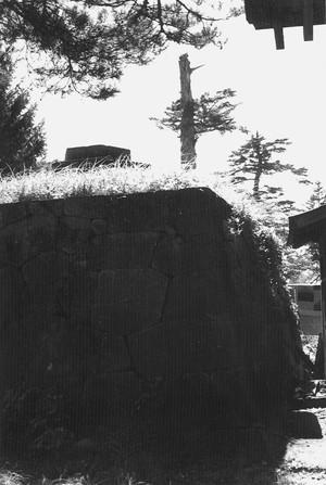 最上公園 石垣