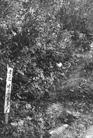 昔の道 峠の地蔵