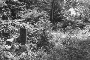 新庄領の石碑(猿羽根山頂)昭和20年頃