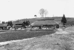 デンマーク農法指導農場