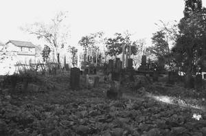 墓石群(墓所)