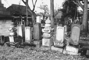 澁谷家一族の墓(接引寺)