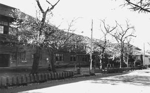 旧新庄市立新庄小学校