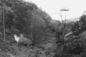 炭焼窯の煙り