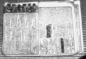「東京絵入新聞」