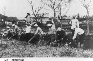 昭和開拓開墾作業