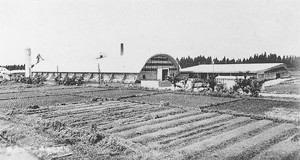 日本ファイバー・アングルボード工業(昭和37年)