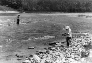 小国川のアユ釣り