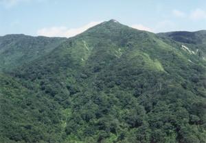 台山尾根から神室山頂を望む