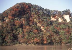 紅葉の八向山