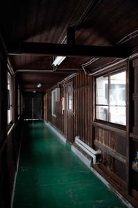 エコロジーガーデン廊下