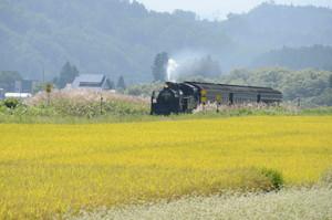 田園とSL機関車