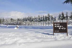 エコロジーガーデンの雪景色