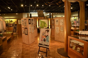 漫画ミュージアム「みをつくし料理帖」企画展